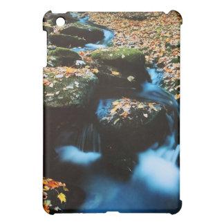 Autumn River iPad Mini Case