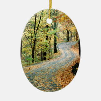Autumn Road Percy Warner Park Christmas Ornament
