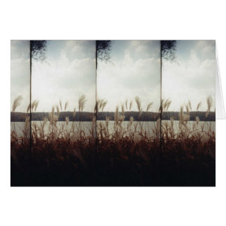 Autumn shoreline card