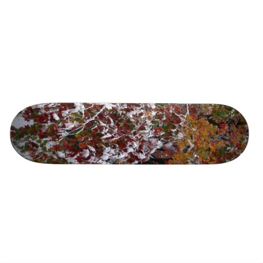 Autumn Snow Skateboard