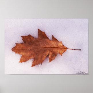 Autumn Solitude Print