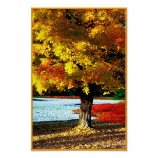 Autumn Splendor Poster