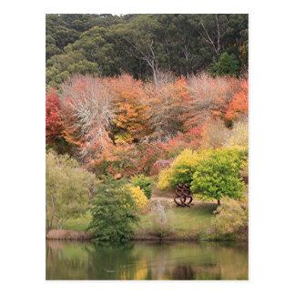 Autumn splendour, Adelaide Hills 2 Postcard