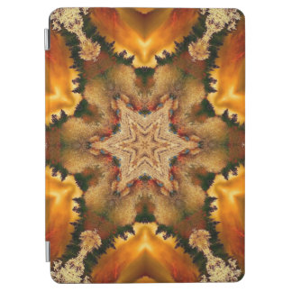 Autumn Stars Mandala iPad Air Cover