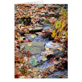 Autumn Stream Card
