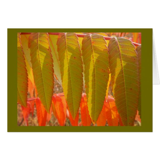 Autumn Sumac Leafs Blank Note Card