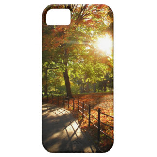 Autumn Sun in Central Park - New York City iPhone 5 Covers