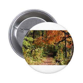 Autumn Trail Pin