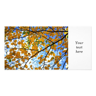 Autumn tree branches customized photo card
