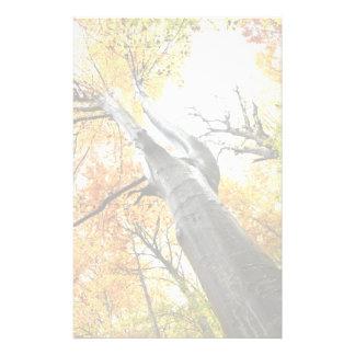 Autumn tree customised stationery