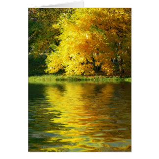 Autumn tree in the forest with reflection greeting card
