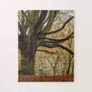Autumn Tree Jigsaw Puzzle