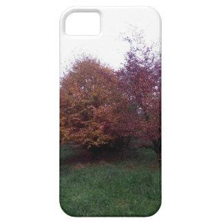 Autumn Tree phone case