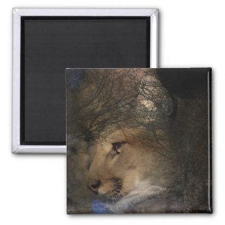 Autumn tree silhouette mountain lion wild cougar magnet