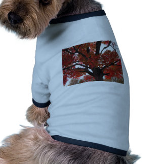 Autumn Tree with Bold Orange and Red Leaves Dog Tee Shirt
