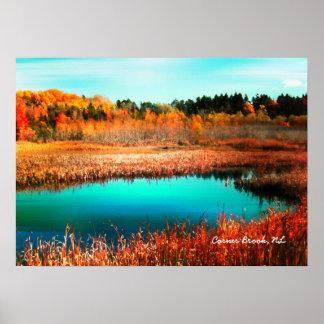 Autumn Trees and Marshland Newfoundland Canada Poster