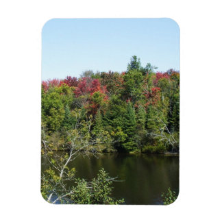 Autumn Trees and Water Scene Rectangular Photo Magnet