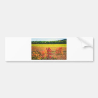 Autumn Trees at Great Meadows Bumper Sticker