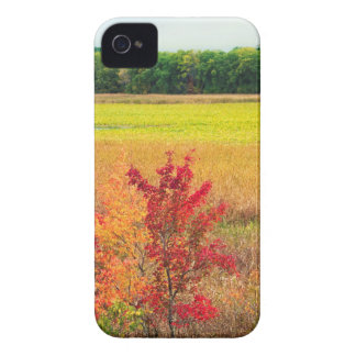 Autumn Trees at Great Meadows Case-Mate iPhone 4 Case