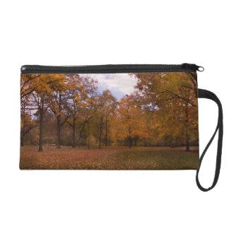 Autumn Trees Landscape Wristlet