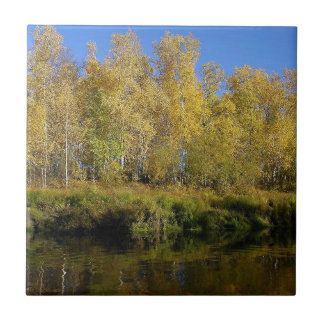 AUTUMN TREES MIRRORED IN WATER SMALL SQUARE TILE