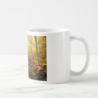 Autumn Trees on Willard Brook Coffee Mug