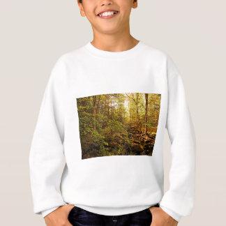 Autumn Trees on Willard Brook Sweatshirt