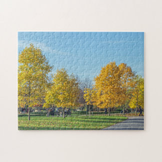 Autumn trees photo puzzle