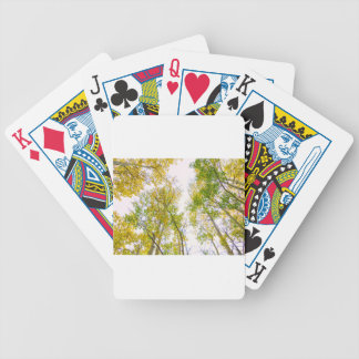 Autumn Turning Bicycle Playing Cards