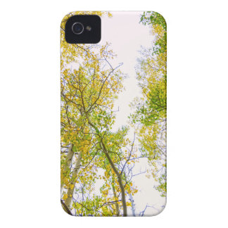 Autumn Turning iPhone 4 Cases