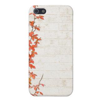 Autumn Vine iPhone 5 Case