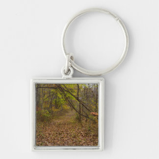 Autumn Walkway Silver-Colored Square Key Ring