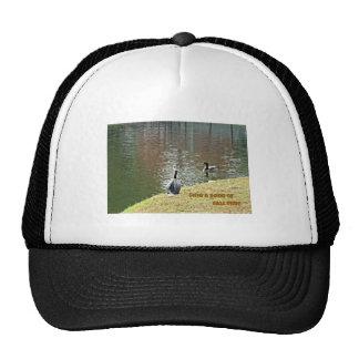 Autumn water scene with ducks hats