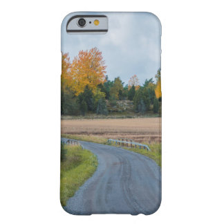 Autumn Way Barely There iPhone 6 Case