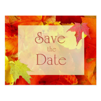 Autumn Wedding Save the Date, Orange Leaves Postcard