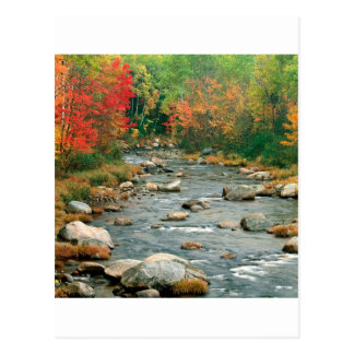 Autumn White Mountains New Hampshire Postcard