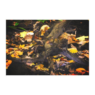 Autumn Wildlife Portrait Canvas Print