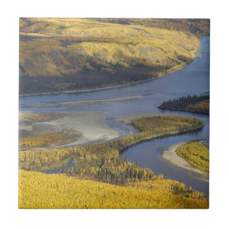 AUTUMN WILDLIFE VIEWING SCENIC SMALL SQUARE TILE