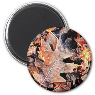 Autumn winter Leafs natural natural Green Trees E Refrigerator Magnet