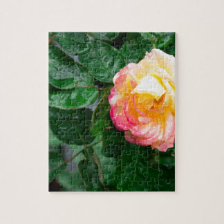 Autumn withered rose with raindrops jigsaw puzzle