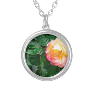 Autumn withered rose with raindrops silver plated necklace