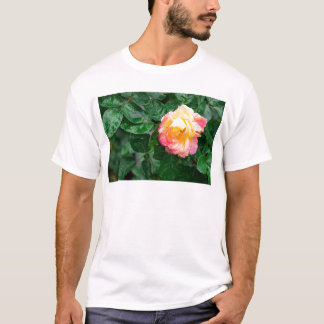 Autumn withered rose with raindrops T-Shirt