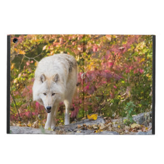Autumn Wolf Case For iPad Air