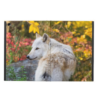 Autumn Wolf Case For iPad Air