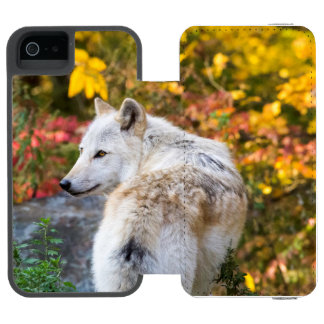 Autumn Wolf Incipio Watson™ iPhone 5 Wallet Case
