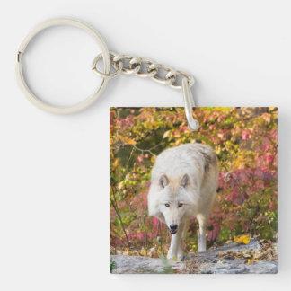 Autumn Wolf Key Ring