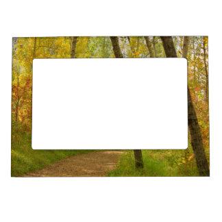 Autumn Woodlands Magnetic Frame
