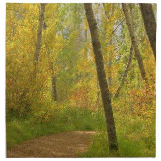 Autumn Woodlands Napkin