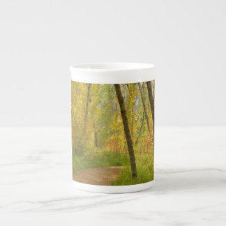Autumn Woodlands Tea Cup
