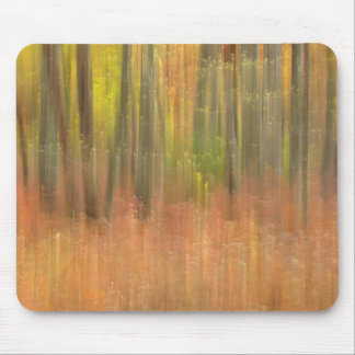 Autumn woods abstract mouse pad